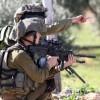 تقرير: قوات الإحتلال الصهيوني تدمر ممتلكات للمواطنين في القرية