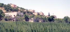 صور من ربيع 2012 في قرية قصرة