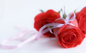 Flowers_wallpapers_6